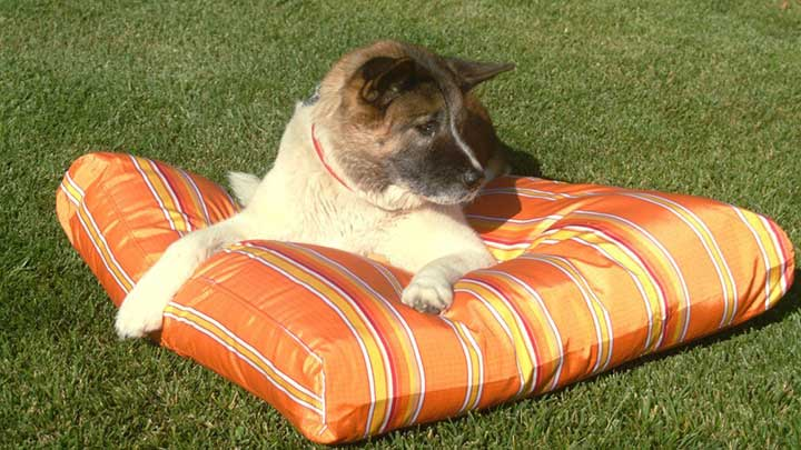 K9-Ballistics-TUFF-outdoor-dog-bed