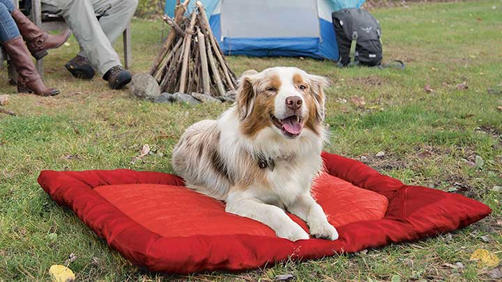 Kurgo-Loft-Wander-Red-Travel-Dog-Bed-Outdoors