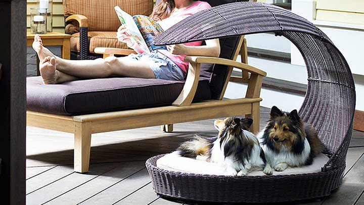 Refined-Canine-Outdoor-Dog-Chaise-Lounge
