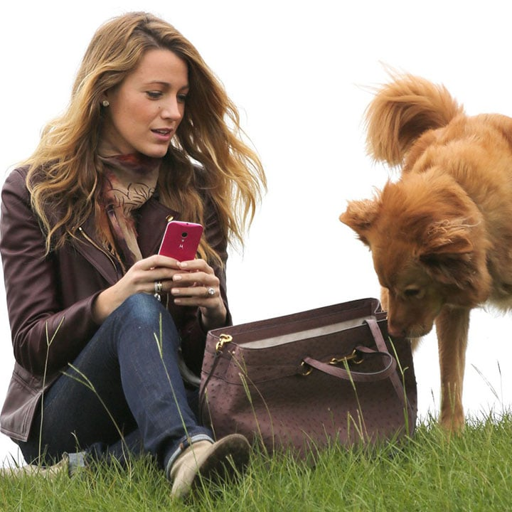blake-lively-dogs