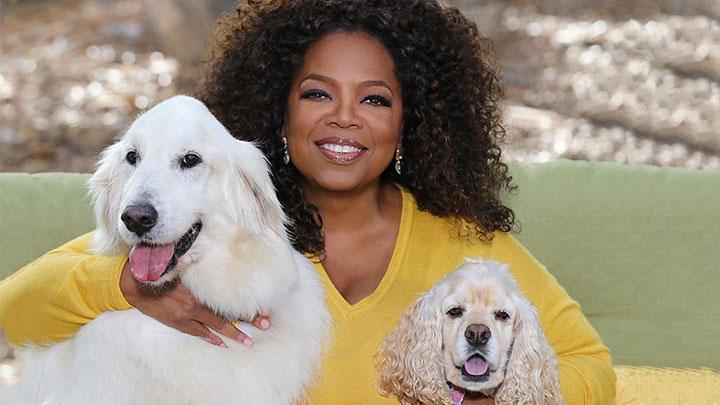 oprah-dogs