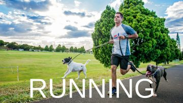 running-with-dogs