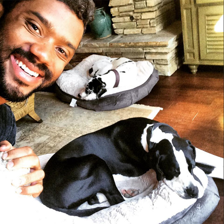 russell-wilson-dogs
