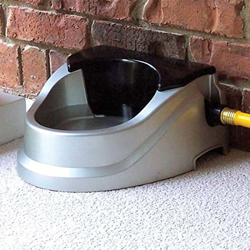 auto fill dog water bowl 10 best outdoor water bowls outdoor world 7521