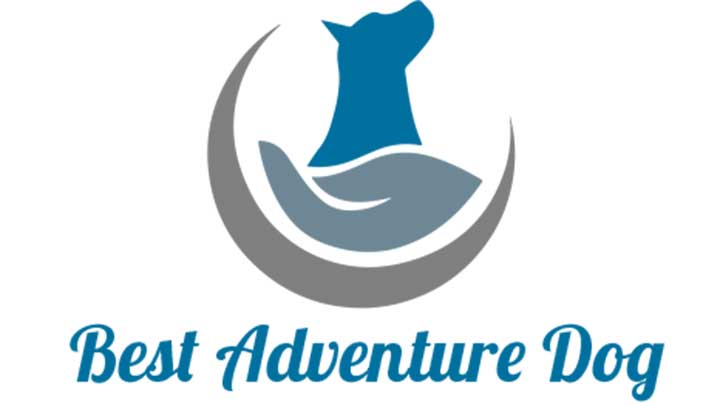 best-adventure-dog-blogs