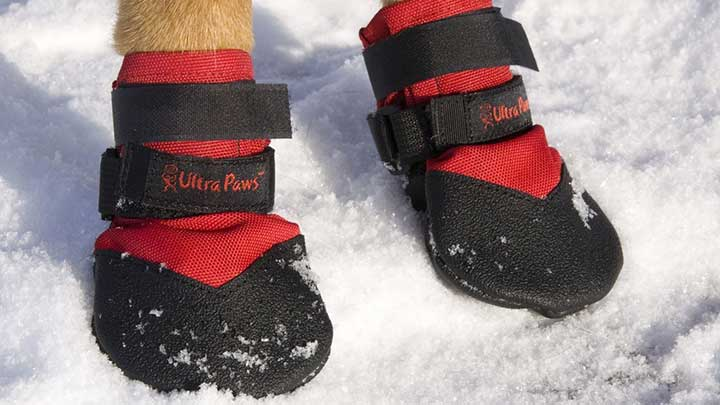 Ultra-Paws-Durable-Dog-Boots