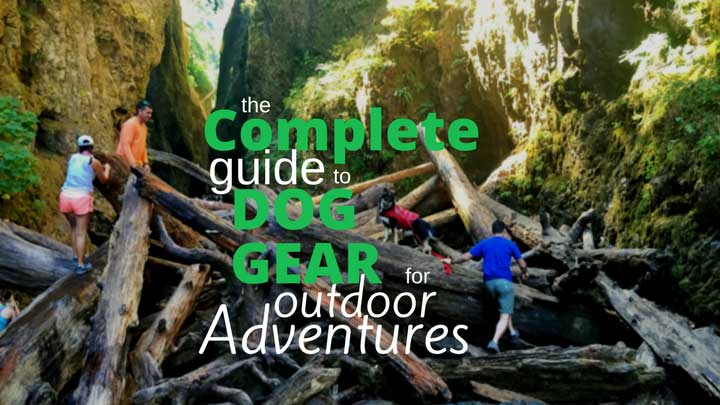 dog-gear-adventure-guide