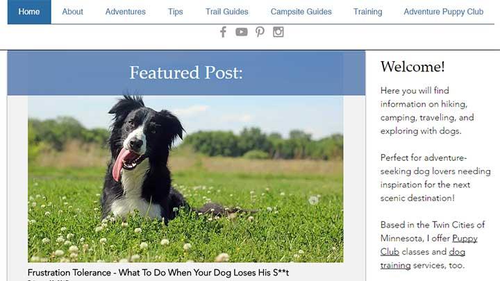 adventure-dog-blog