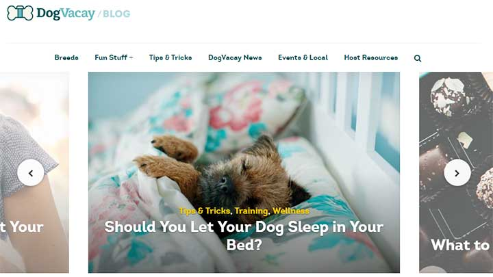 dog-vacay-blog