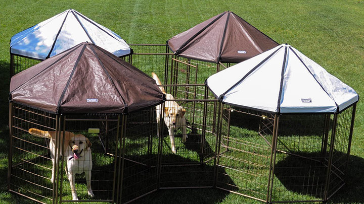 advantek-dog-gazebo-kennel