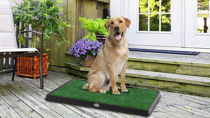 petmaker-artificial-grass-bathroom