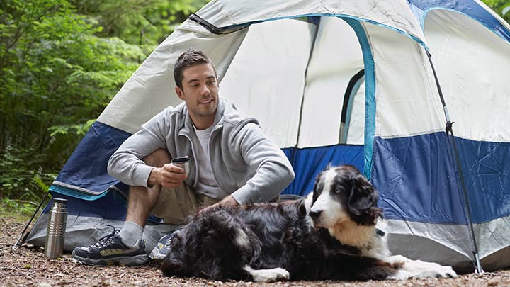 sleeping-camping-tent-with-dog