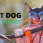 8 Best Dog Bike Basket Carriers (Front and Rear Options)