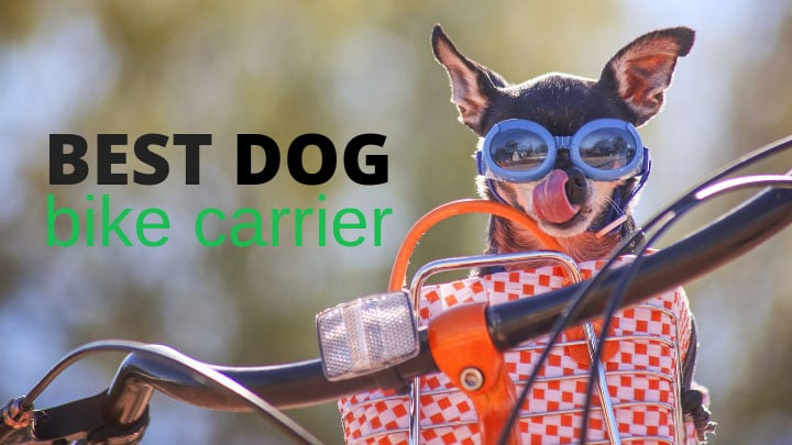 best-dog-bike-carrier