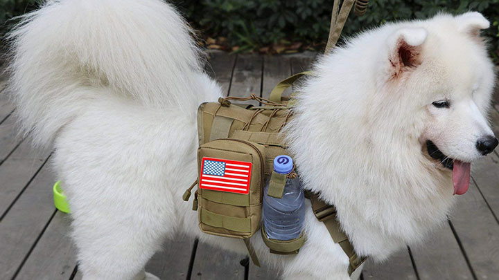 jasgood-tactical-dog-vest