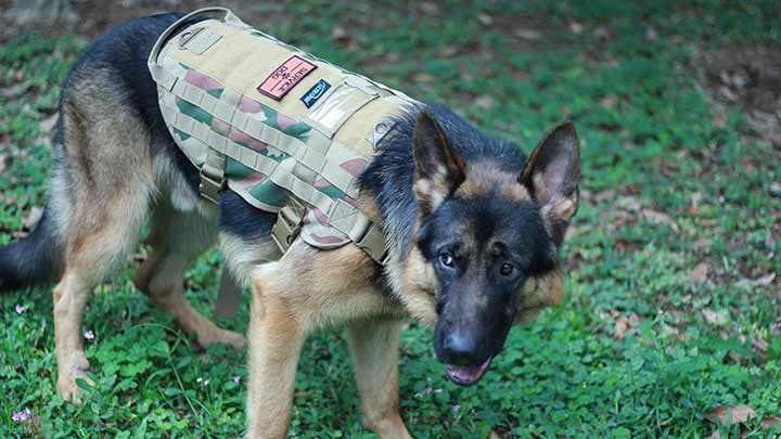 ultrafun-tactical-dog-molle-vest