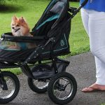 10 Best Dog Strollers in 2018