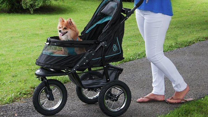 Image result for dog in stroller