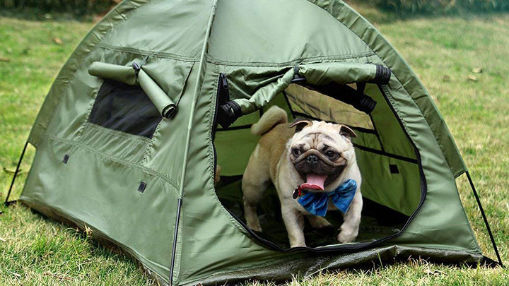 lumsing-dog-tent