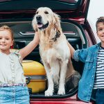 8 Best Cars For Dogs in 2019