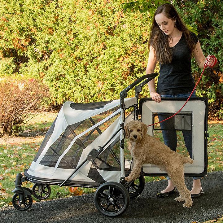 pet-gear-no-zip-large-dog-stroller