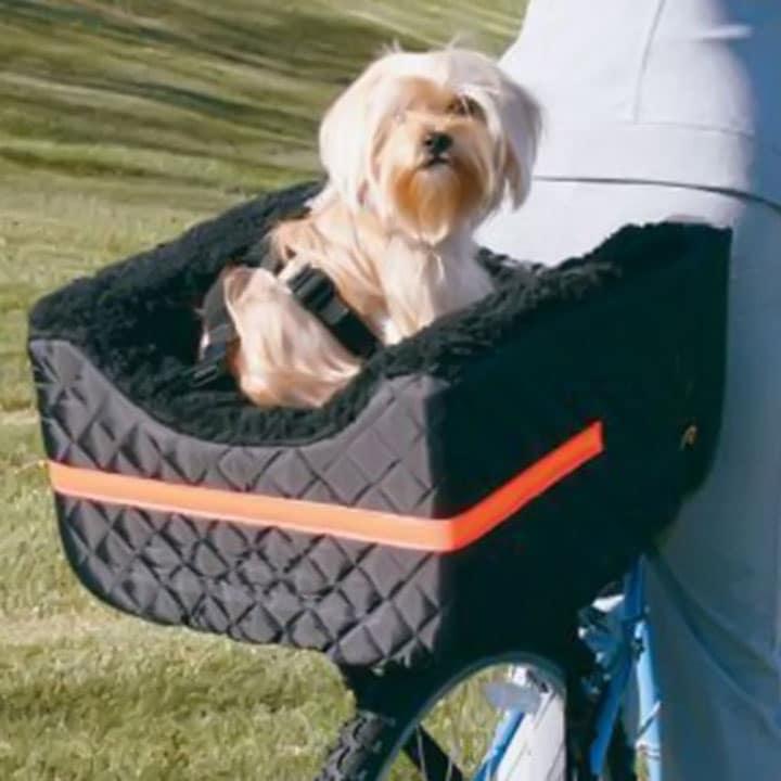 snoozer-pet-rider-rear-bicycle-seat