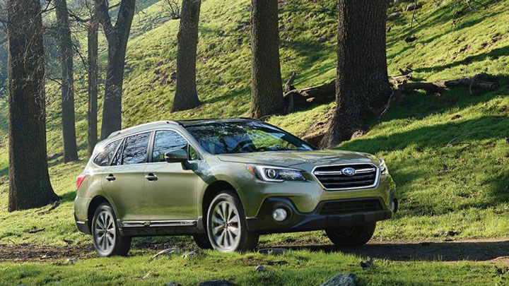 subaru-outback-for-dogs