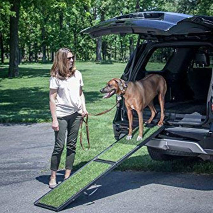 Dog Ramp For Truck >> 5 Best Car Truck Ramps For Dogs In 2019 Outdoor Dog World