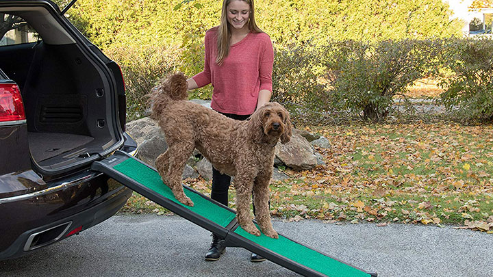 pet-gear-travel-lite-dog-car-ramp