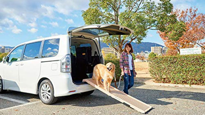 petstep-folding-dog-car-ramp