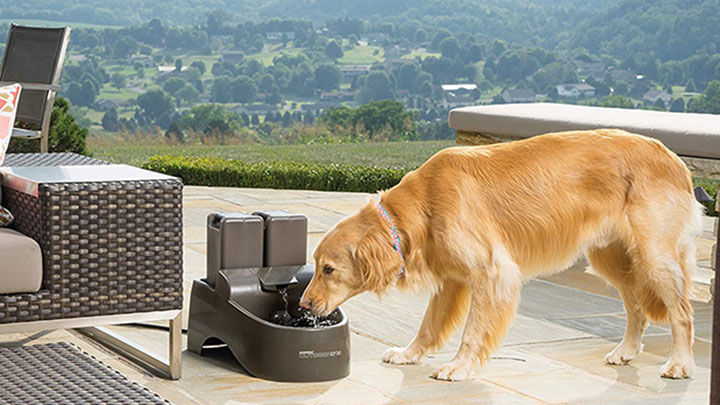 petsafe-drinkwell-dog-water-fountain