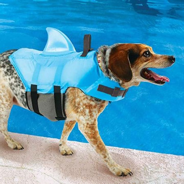 swimways-sea-squirts-dog-life-vest