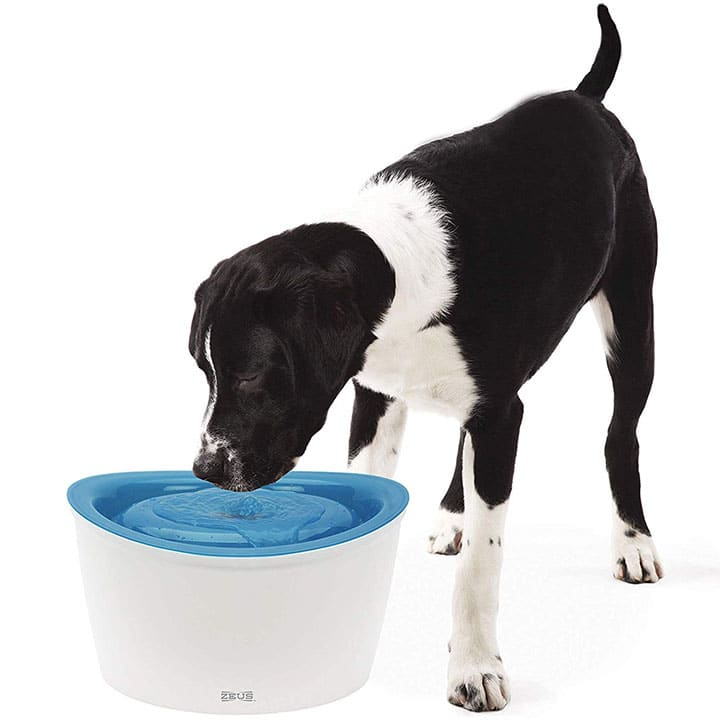 zeus-fresh-dog-water-dispenser