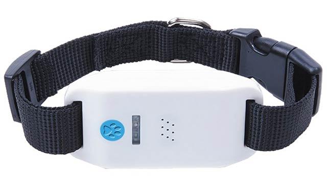 autoseeker-gps-pet-tracker