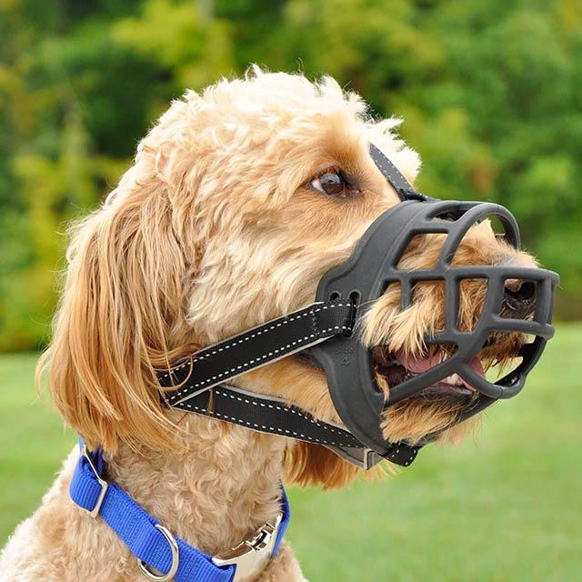 barkless-dog-muzzle