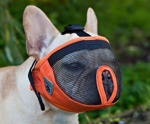 canine-friendly-short-snout-dog-muzzle