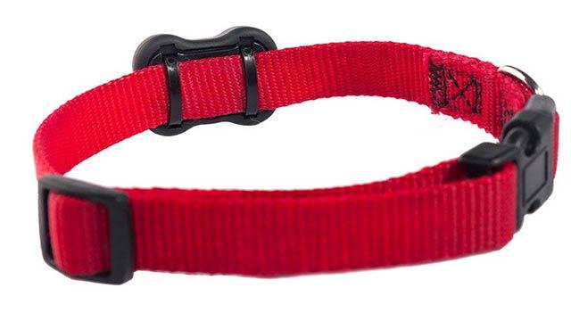 fitbark-2-dog-collar
