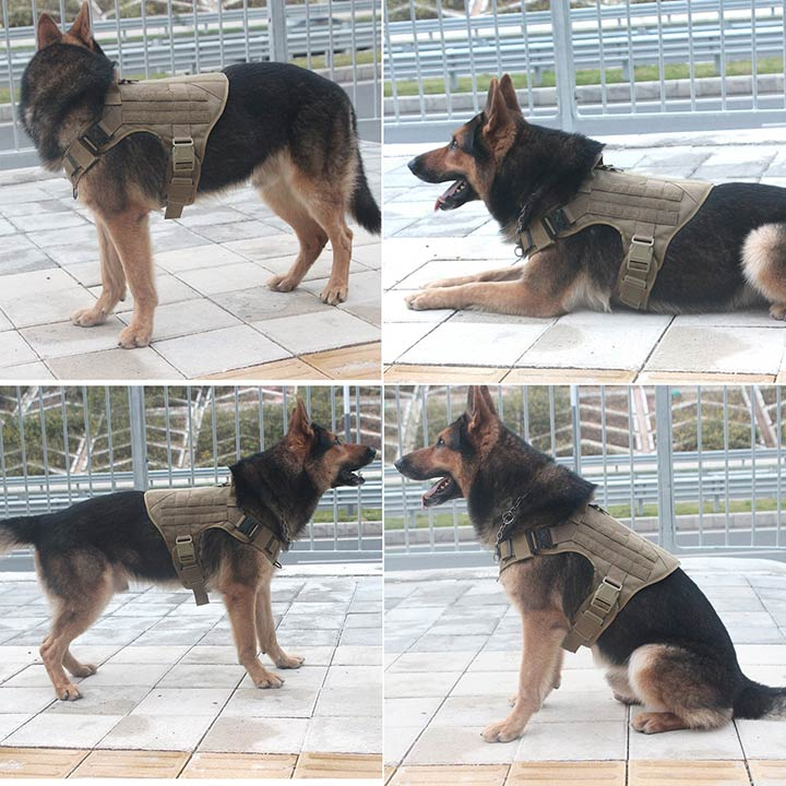 icefang-large-working-dog-harness