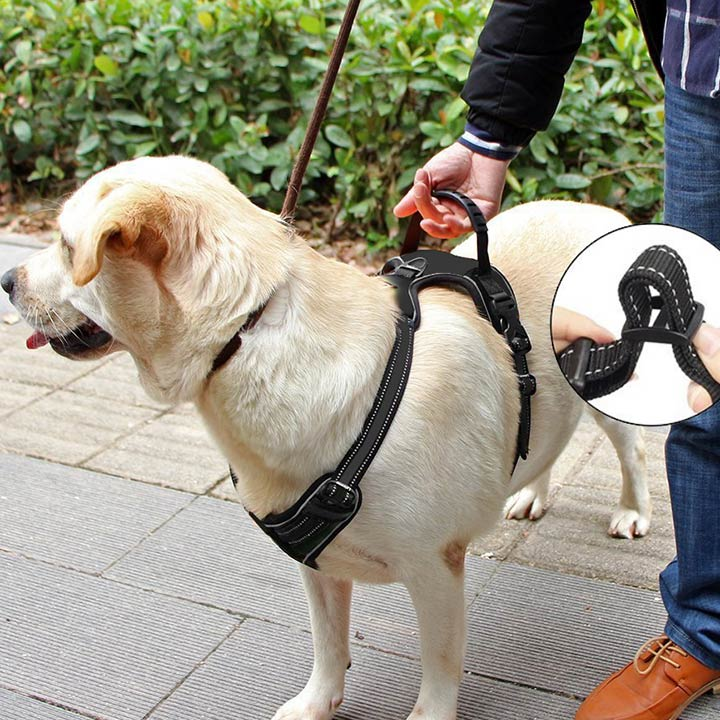 lifepul-front-clip-no-pull-dog-harness