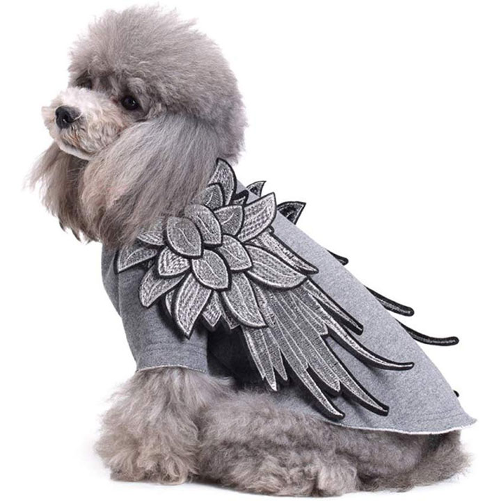 angel-wings-dog-costume