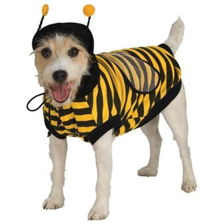 bumble-bee-dog-costume