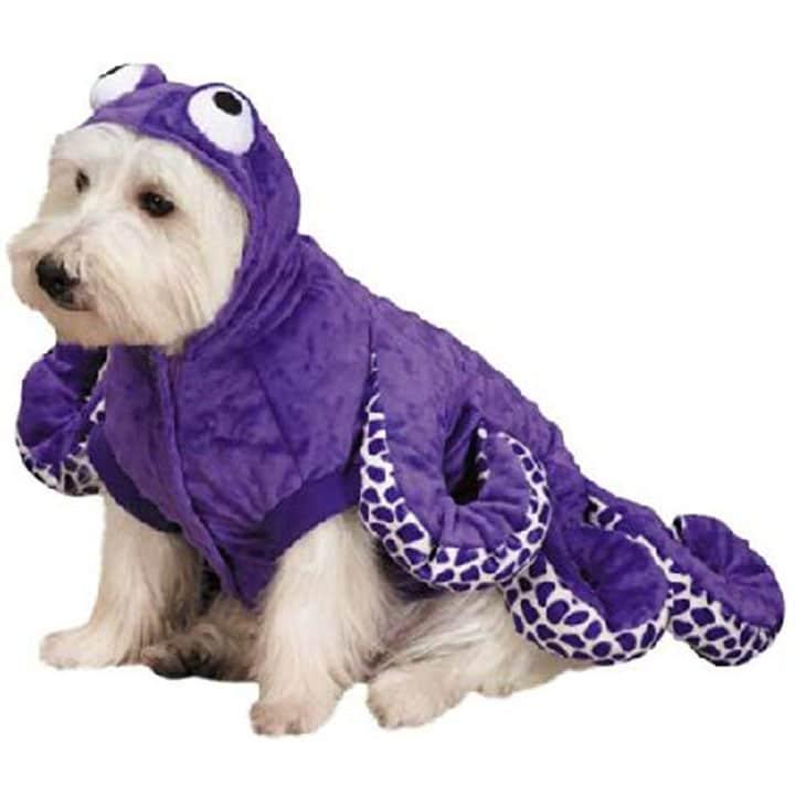 octopus-dog-costume
