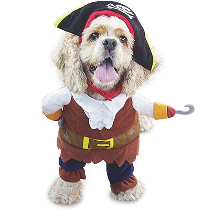 pirate-dog-costume