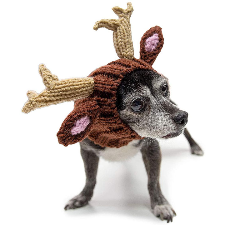 reindeer-dog-costume