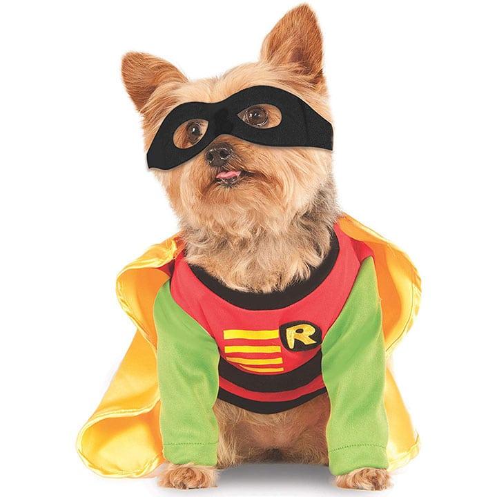 robin-dog-costume