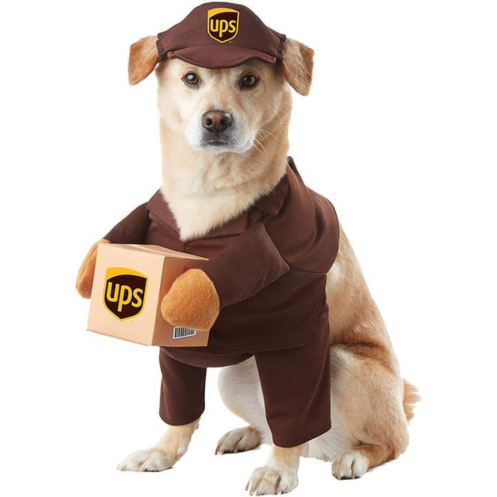ups-dog-costume