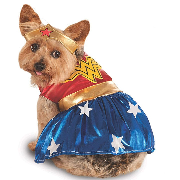 wonder-woman-dog-costume