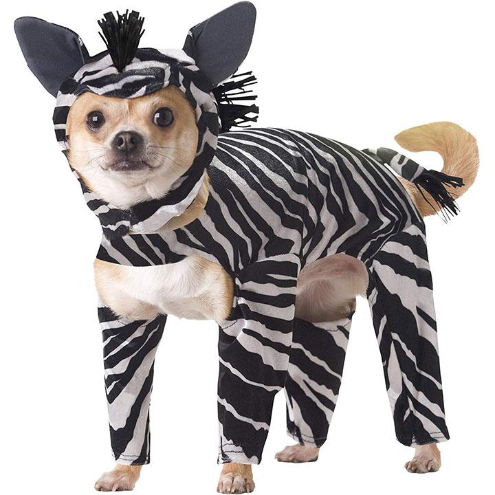 zebra-dog-costume