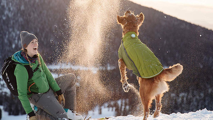 ruffwear-powder-hound-dog-jacket