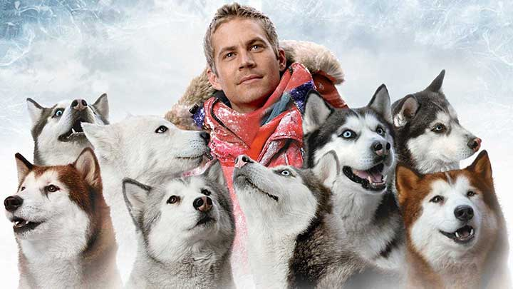 eight-below-husky-movie